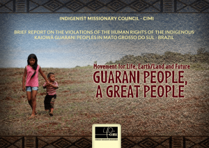 Brief Report on the violations of the Human Rights of the indigenous Kaiowá Guarani peoples in Mato Grosso do Sul – Brazil