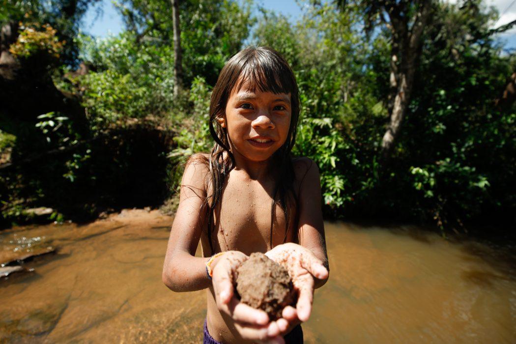 Terra indígena Guyraroka. Foto: Tiago Miotto/Cimi