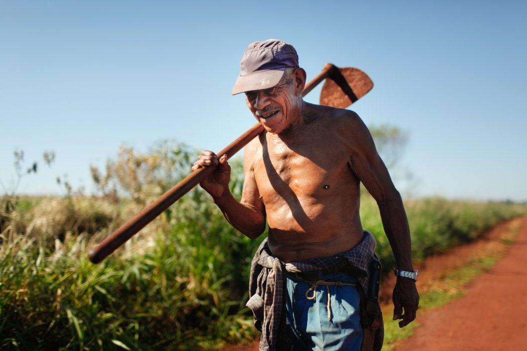 Contando 99 anos, seu Tito ainda trabalha nos pequenos roçados comunitários do Guyraroka. Foto: Tiago Miotto/Cimi