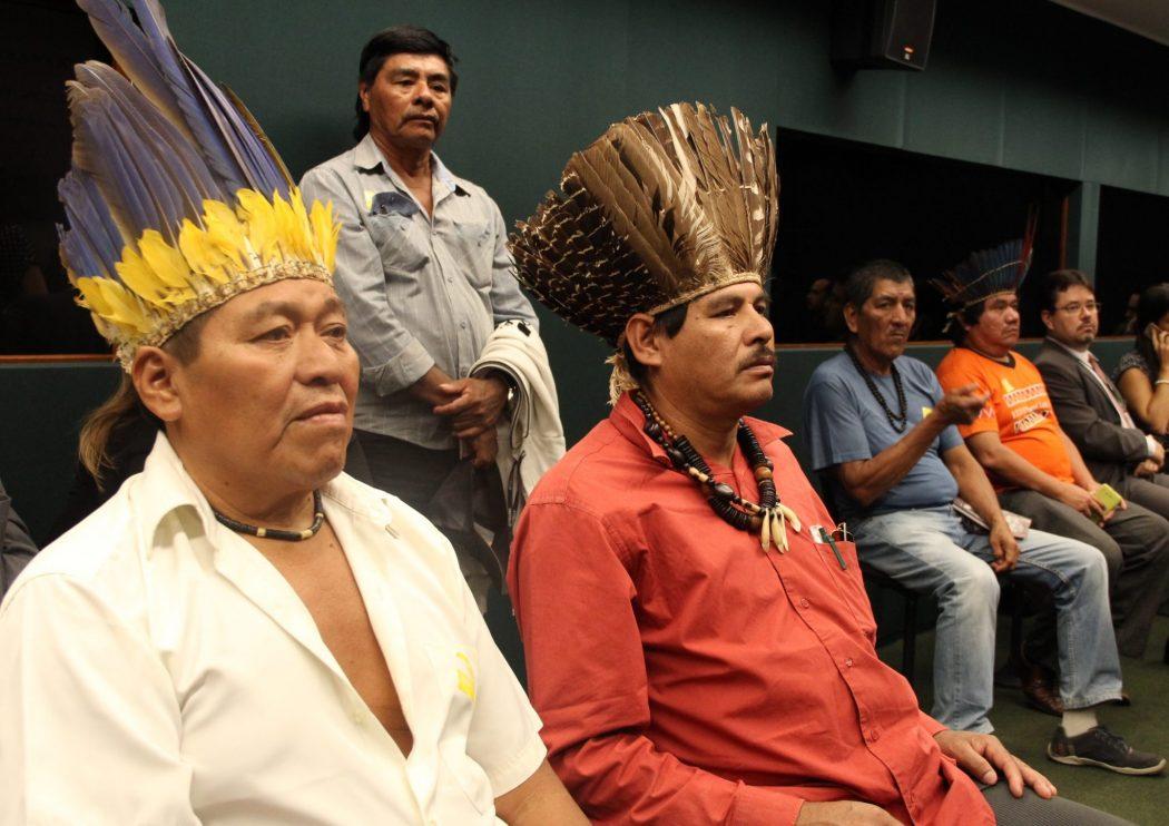 Delegação Kinikinau e Conselho do povo Terena na Câmara dos Deputados. Foto: Michelle Calazans, Ascom Cimi