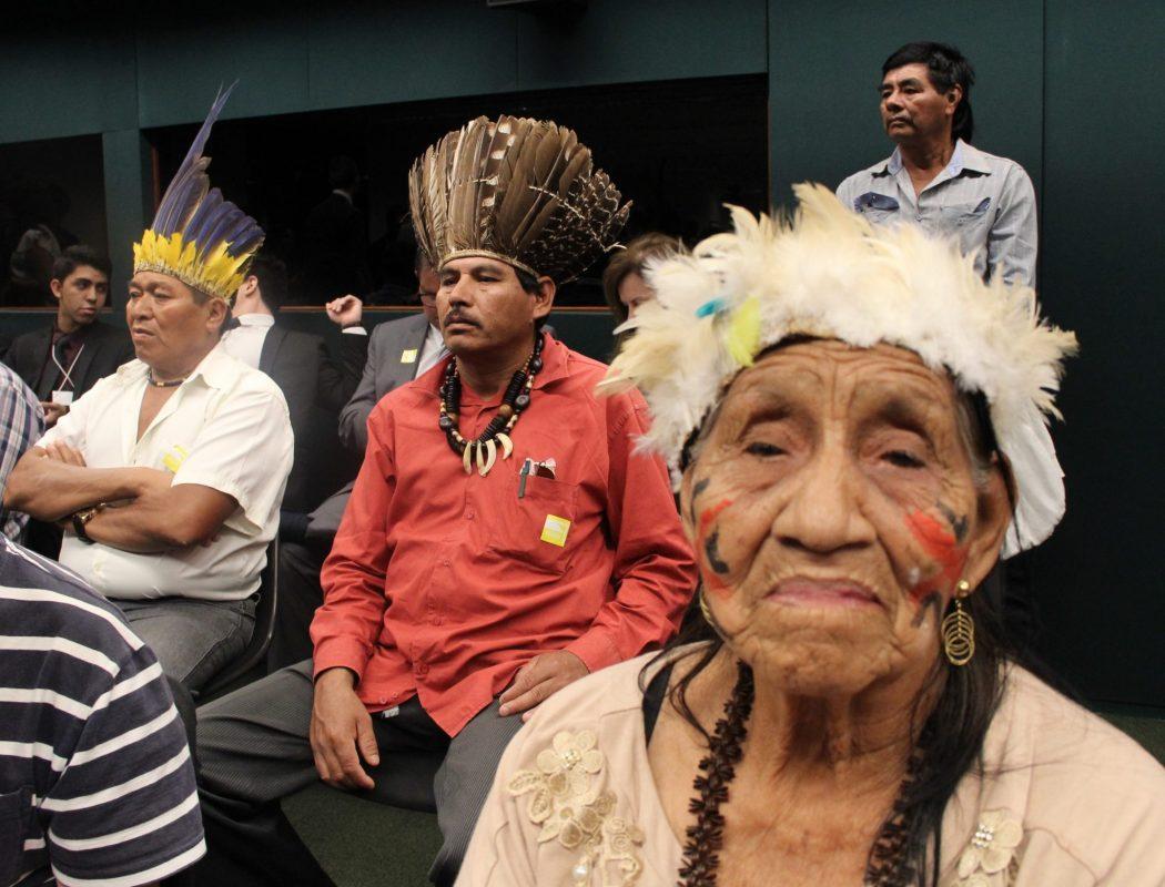 Anciã Severina, povo Kinikinau na Câmara dos Deputados. Foto: Michelle Calazans, Ascom Cimi