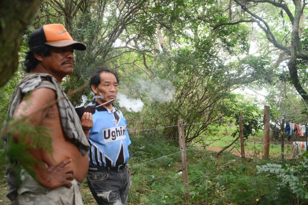 Cerca limita a liberdade de trânsito dos Guarani, cada vez mais vigiados por seguranças privados. Foto: Amigos da Terra Brasil