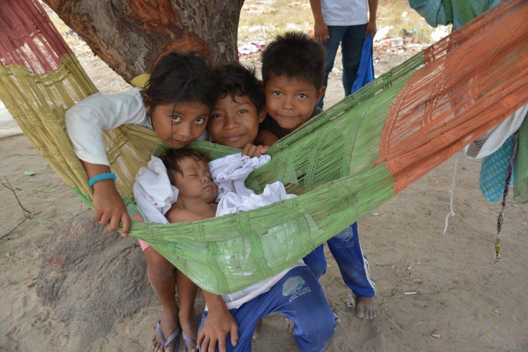 Crianças warao fora do abrigo buscam proteção em uma árvore. Foto por Jaime C. Patias