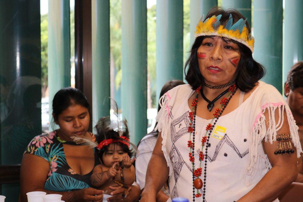 Mbo'y Jeguá, uma das lideranças que integram a delegação indígena composta pelos povos Terena, Kinikinau, Guarani e Kaiowá, na Comissão de Direitos Humanos e Minorias (CDHM) da Câmara dos Deputados. Foto por Adilvane Spezia, da Ascom Cimi