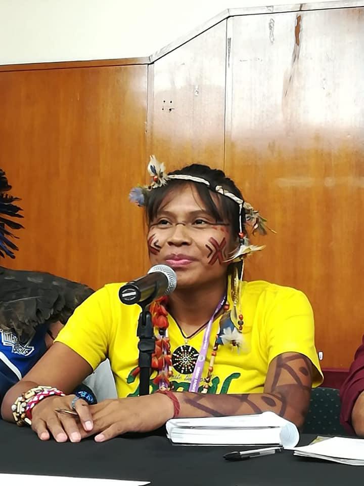 """""""Vamos lutar pela terra, nem que eles abram um buraco, nos matem e enterrem"""", diz Erileide Guarani Kaiowá em evento paralelo à ONU"""
