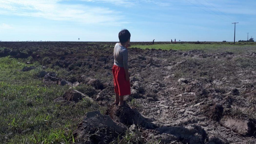 Criança indígena observa a terra lavrada em fazenda localizada no interior da Terra Indígena Guyraroka. Foto: comunidade do tekoha Guyraroka