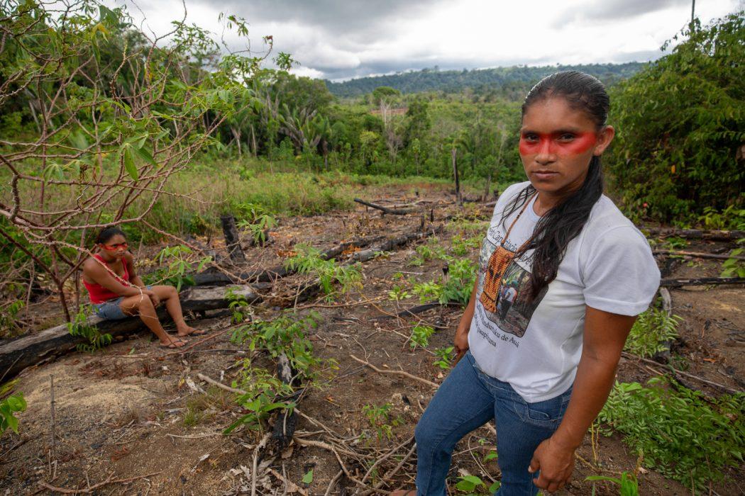 Graciene Munduruku em meio a um dos roçados tradicionais do Planalto, muitos dos quais em áreas de rica terra preta. Foto: Tiago Miotto/Cimi