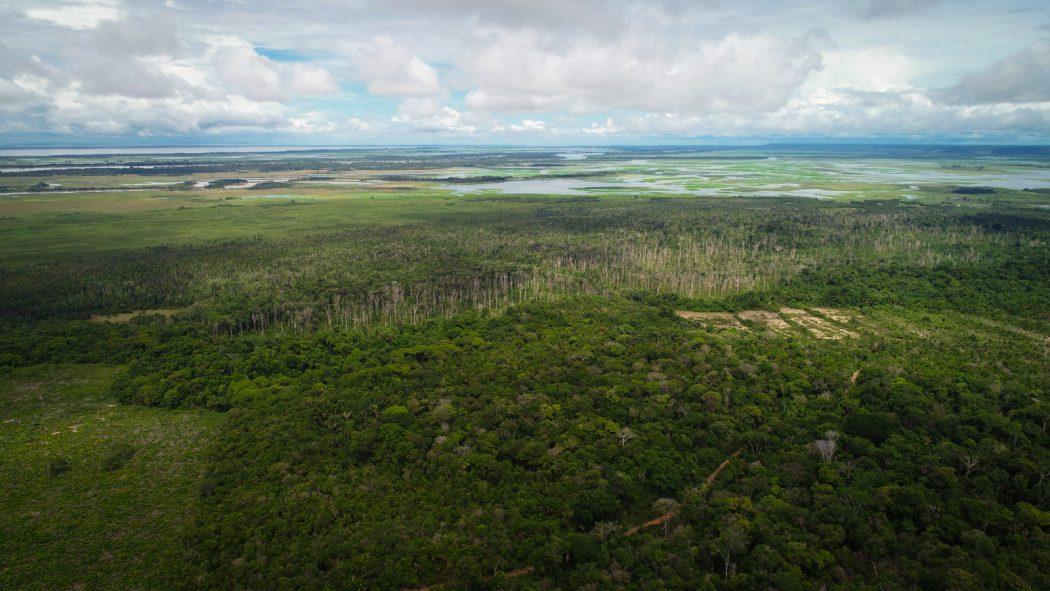 Com sua luta, os Munduruku do Planalto ainda conseguem preservar as matas de parte do território. Ao fundo, o lago Maicá. Foto: Arthur Massuda/Cimi