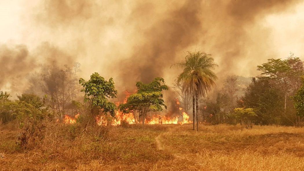 Queimadas atingiram grande parte da TI Urubu Branco em setembro de 2019. Segundo os indígenas, incêndios foram iniciados por ação de fazendeiros e posseiros. Foto: povo Tapirapé
