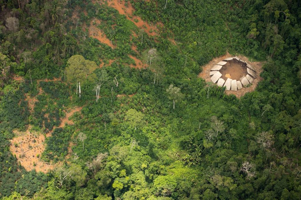 Isolados na Terra Indígena Yanomami. Foto: acervo Funai/FPEYY