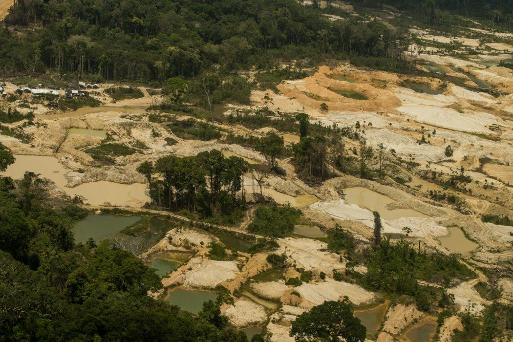 Sobrevoo regista áreas de garimpos ilegais dentro da Terra Indígena Munduruku, no Pará, em setembro de 2019. Foto: Christian Braga/Greenpeace