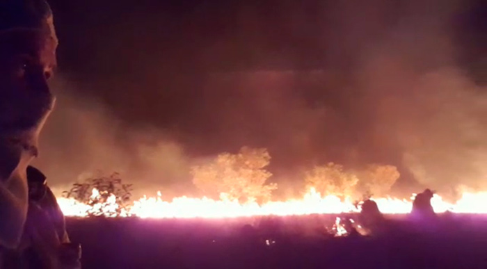 Reprodução de vídeo gravado por brigadista, mostrando incêndio na Mata do Mamão. Foto: reprodução